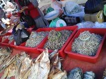 Poissons secs chez Kota Marudu Weekend Market photographie stock libre de droits