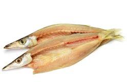 Poissons secs de barracuda Images stock