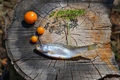 Poissons secs sur un tronçon Photos libres de droits