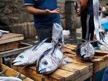 Poissons sur la poissonnerie Images libres de droits