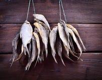 Poissons traités accrochant sur une corde Image stock