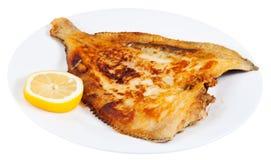 Poissons uniques frits du plat blanc Photo stock