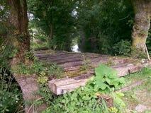 从Poitou的沼泽 免版税库存照片