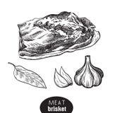 Poitrine et épices de boeuf illustration stock