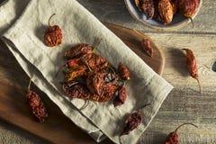 Poivre épicé chaud superbe de Bhut Jolokia de scorpion Photographie stock libre de droits