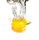 Papper avec l'éclaboussure de l'eau sur le blanc Photo libre de droits