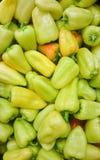 Poivre bulgare haut étroit doux vert de paprikas de mélange frais, paprika coloré assorti de poivron images libres de droits