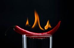 Poivre chaud sur l'incendie Image stock
