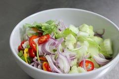 Poivre, concombre, oignon rouge, coupé en tranches Image libre de droits