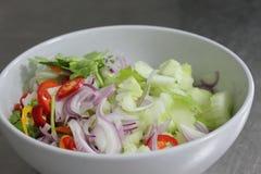 Poivre, concombre, oignon rouge, coupé en tranches Image stock