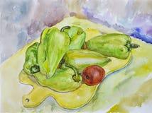 Poivre délicieux vert clair peint avec l'aquarelle Photos stock