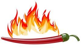 Poivre d'un rouge ardent avec des flammes illustration stock