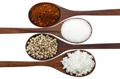 Poivre de Cayenne, sel, poivre et sucre Photographie stock libre de droits