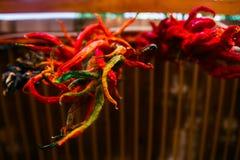 Poivre de piment d'un rouge ardent accrochant Photo libre de droits