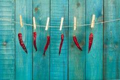 Poivre de piment d'un rouge ardent sur le fond en bois de turquoise Images stock