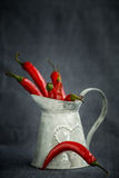 Poivre de piment rouge chaud dans un panier de gris en métal Photo stock