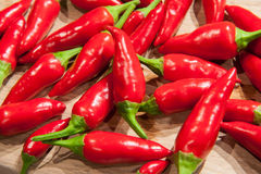 Poivre de piments Photo stock