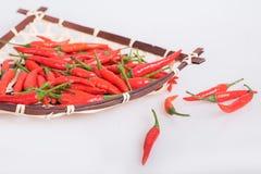 Poivre de piments Images stock