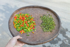 poivre de piments Photographie stock libre de droits