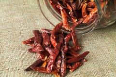 Poivre de piments de Cayenne Image libre de droits