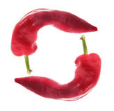 Poivre de piments rouges Image stock
