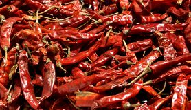 Poivre de piments rouges sec Photographie stock