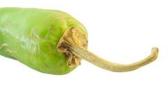 Poivre de /poivron chaud vert Image stock