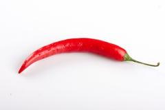 Poivre de /poivron d'un rouge ardent Photographie stock libre de droits
