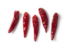 Poivre de /poivron d'un rouge ardent Photos stock