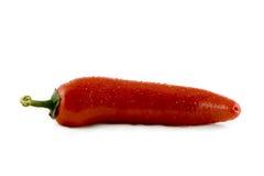 Poivre de /poivron d'un rouge ardent avec des baisses de l'eau d'isolement Photographie stock