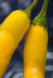 Poivre de /poivron jaune Photographie stock