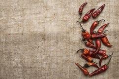 Poivre de /poivron rouge sec Images stock