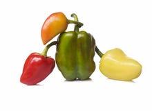 Poivre de quatre légumes sur le fond blanc d'isolement photographie stock libre de droits