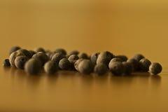 Poivre noir Photographie stock