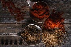Poivre noir et poivron rouge sur cuillères image stock