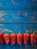 Poivre organique rouge images stock