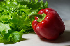 Poivre succulent avec de la salade Photo stock