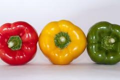 Poivre tricolore photographie stock