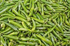 Poivre vert Image libre de droits