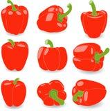Poivrez, ensemble de poivron rouge, illustration Images libres de droits