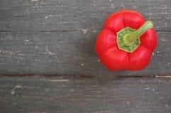 Poivron de poivron rouge annuum Images libres de droits