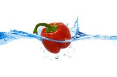 Poivron doux projeté dans l'eau Images libres de droits