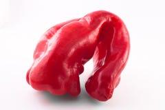 Poivron doux rouge laid photographie stock