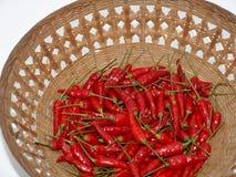 Poivron rouge Photo libre de droits