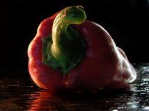 Poivron rouge Images stock