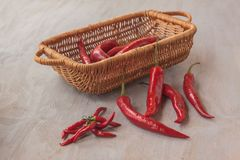Poivron rouge chaud sur une table grise images stock