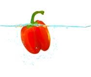 Poivron rouge dans l'eau Image stock