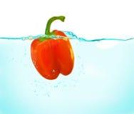Poivron rouge dans l'eau Photos stock