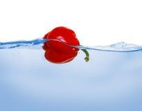 Poivron rouge dans l'eau Photographie stock