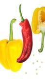 Poivron rouge de poivre jaune Photographie stock libre de droits